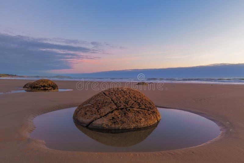 Moeraki stenblockcloseup på lågvatten, Koekohe strand, Nya Zeeland arkivbilder