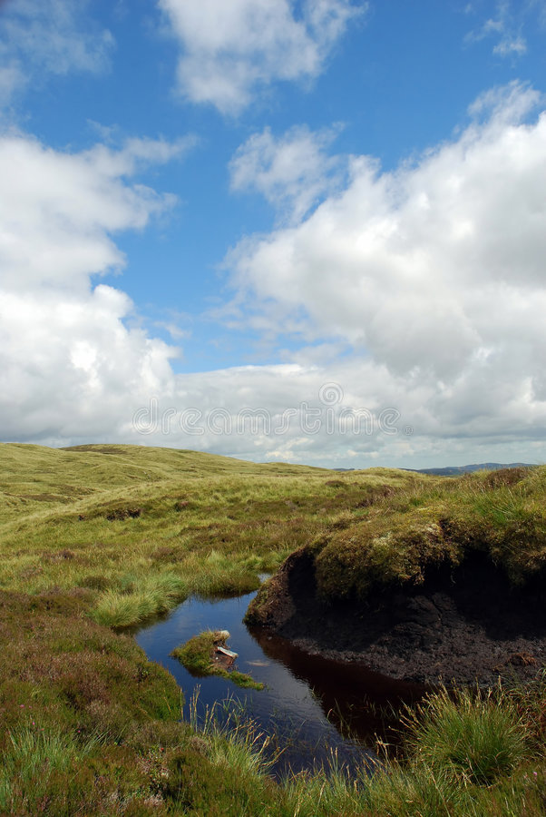 Moeras 01 van de turf stock afbeelding