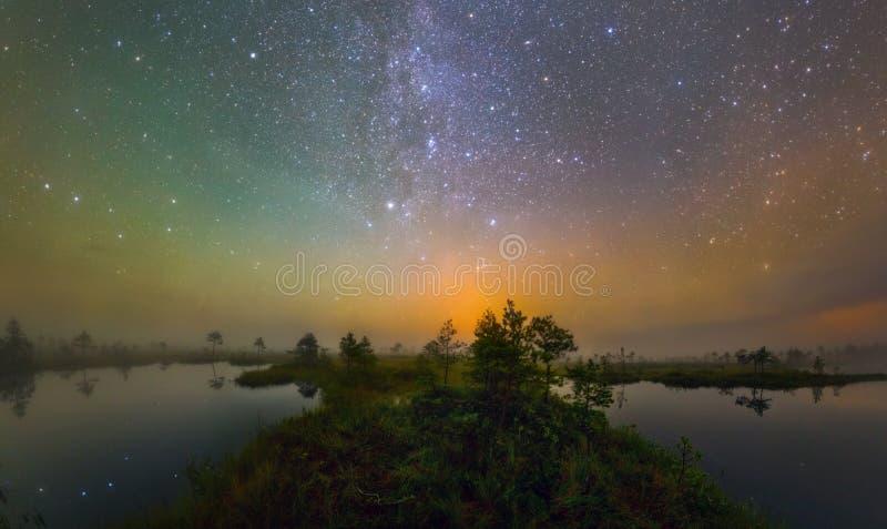 Moeras in de nacht royalty-vrije stock afbeeldingen