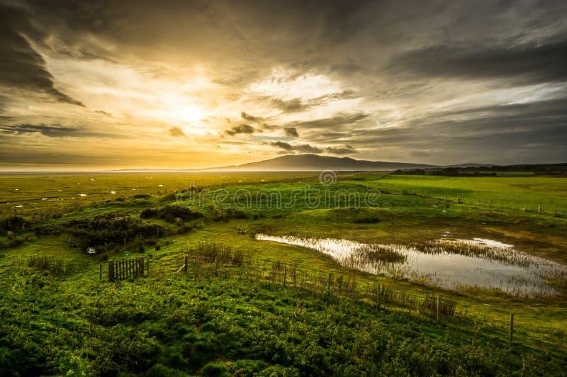 Moerasland in Dumfries en Galloway stock afbeelding