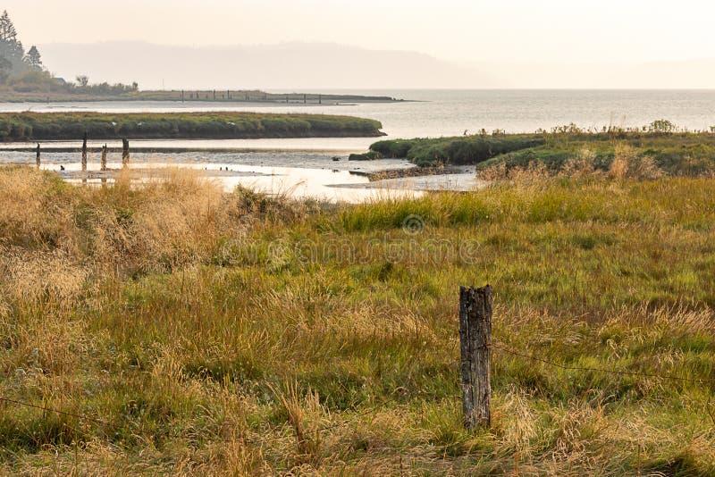 moerasland langs de kustlijn van kapkanaal royalty-vrije stock afbeelding