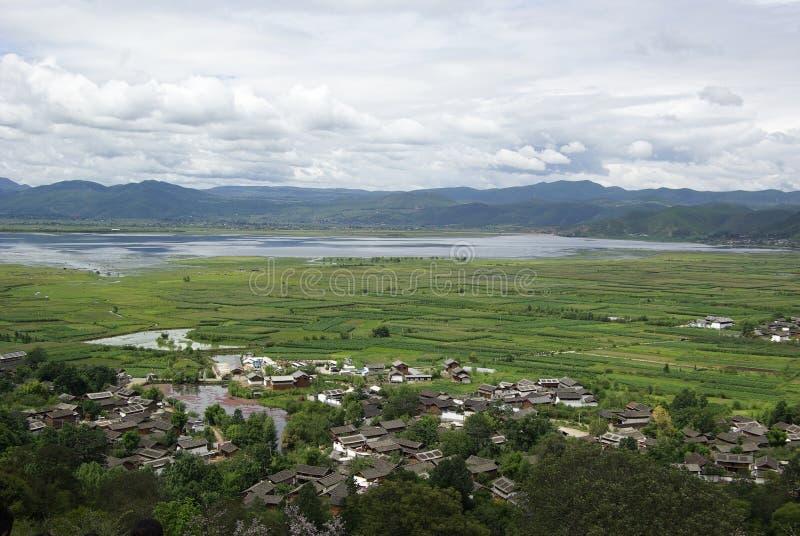 Moerasland naast landelijk stock afbeeldingen