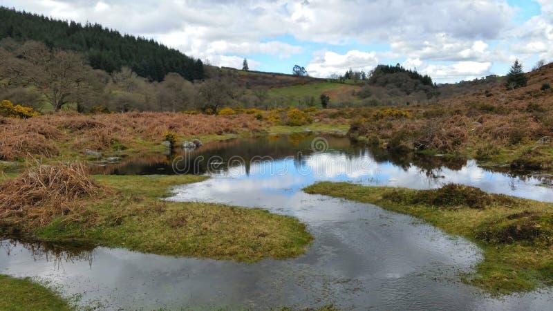 Moerasland op dartmoor nationaal park Devon het UK stock afbeelding