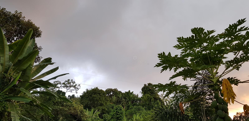 moesson stock afbeelding