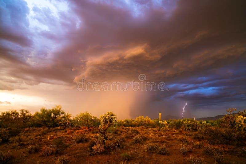 Moessononweer met regen in de woestijn stock afbeeldingen