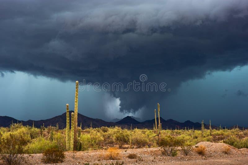 Moessononweersbui met dramatische wolken over de woestijn van Arizona stock foto's