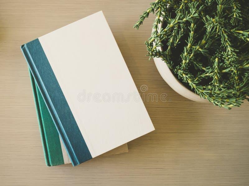 Mofa de la cubierta de libro encima de la plantilla en la tabla con la decoración de la planta imagenes de archivo