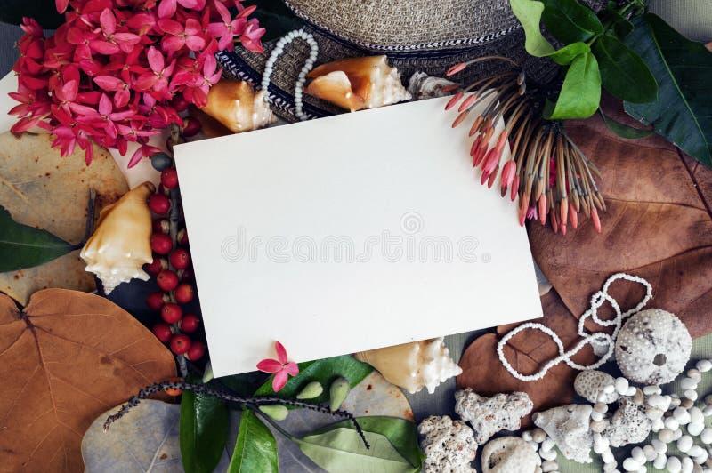 Mofa del Caribe para arriba imagen de archivo libre de regalías
