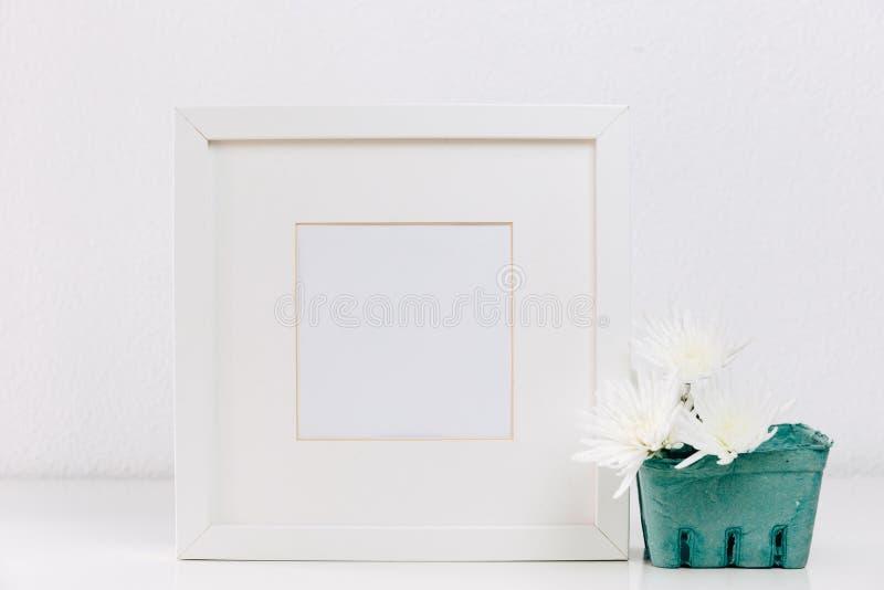 Mofa encima del marco blanco con las flores fotos de archivo