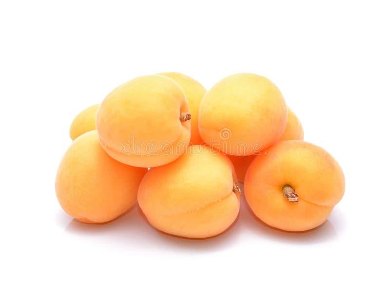 mogen aprikos arkivfoto