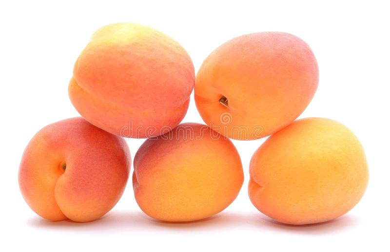 Mogen aprikos i closeup royaltyfria bilder
