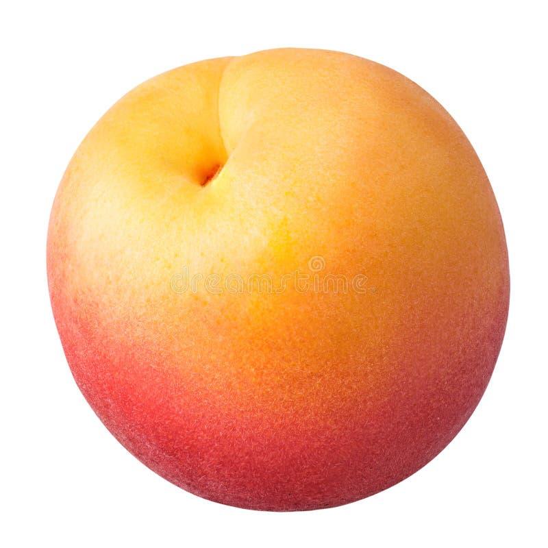 Mogen aprikos som isoleras på en vit bakgrund royaltyfri bild