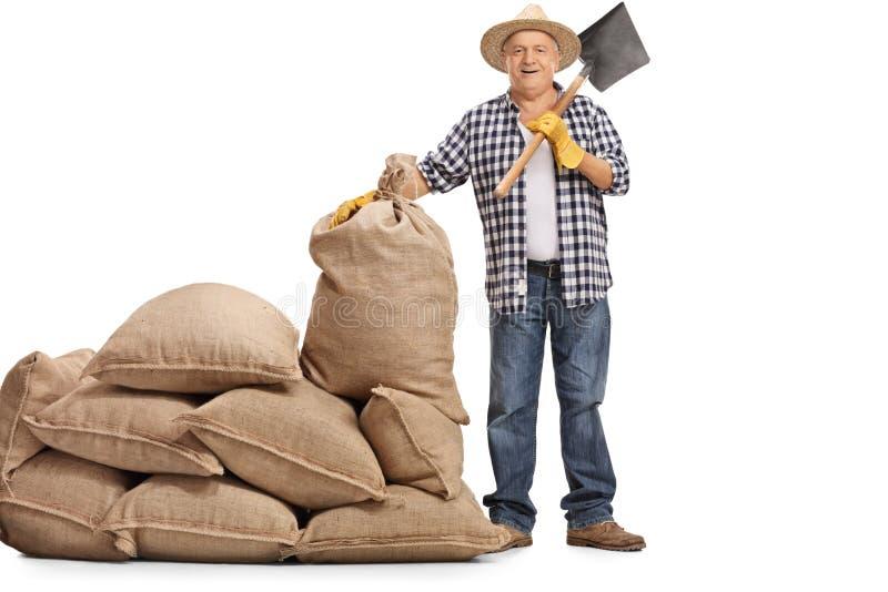 Mogen bonde med ett skyffelanseende bredvid en hög av säckväv sa fotografering för bildbyråer