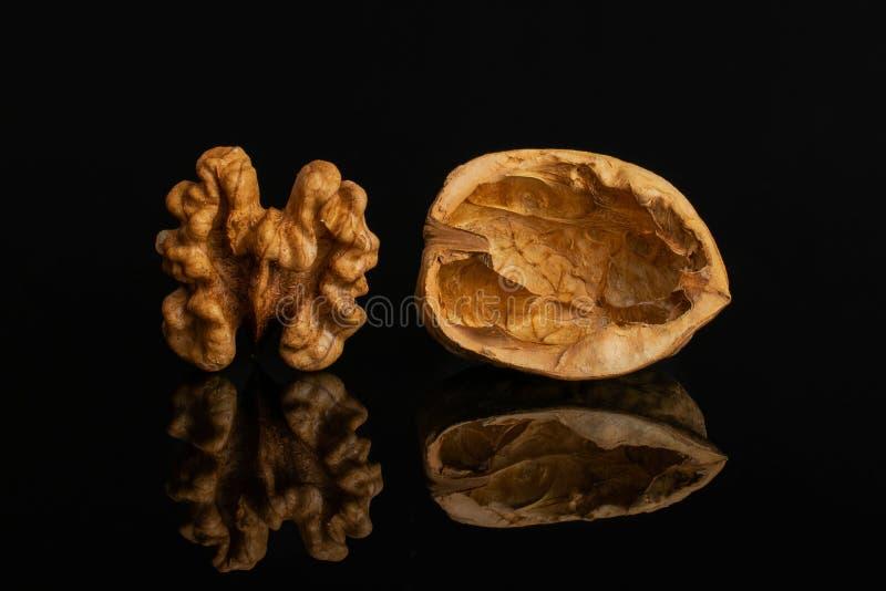 Mogen brun valnöt som isoleras på svart exponeringsglas royaltyfria foton
