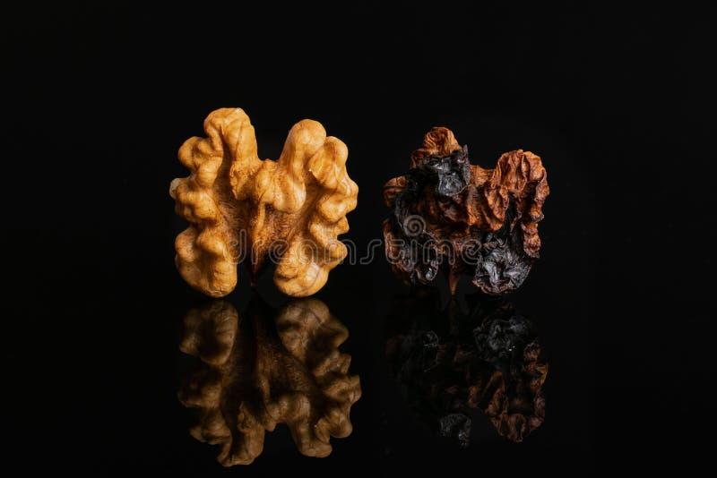 Mogen brun valnöt som isoleras på svart exponeringsglas arkivbild