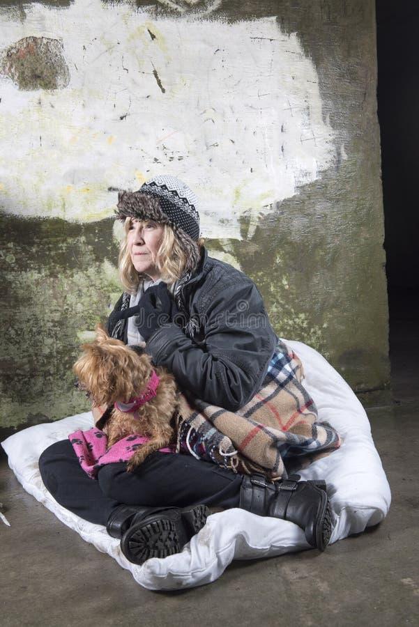 Mogen hemlös kvinna som tigger utomhus med en liten hund arkivfoto