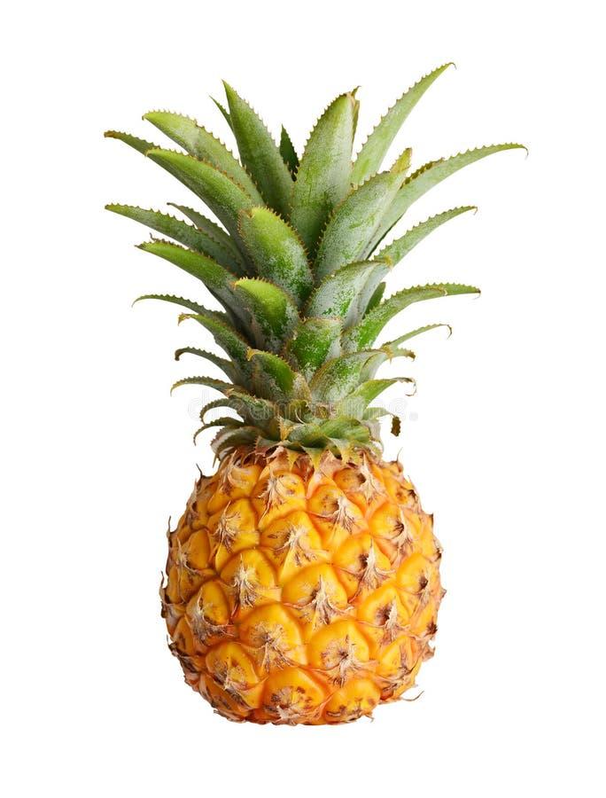 mogen isolerad ananas arkivfoton