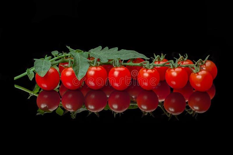 Mogen körsbärsröd tomat med sidor royaltyfri bild