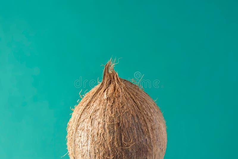 Mogen kokosnöt för tropisk bakgrund på den gröna bakgrunden Sunt begrepp för semester för lopp för sommar för matlivsstilvitamine arkivbild