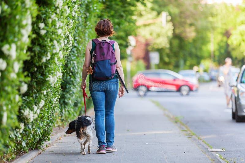 Mogen kvinna med den Brittany hunden på en trottoar arkivfoton