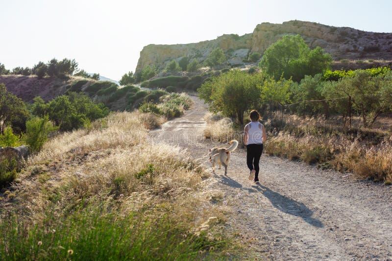 Mogen kvinna med labrador som joggar i bygd arkivbilder