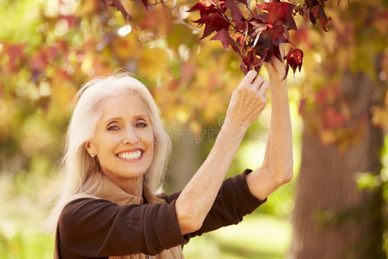 Mogen kvinna som kopplar av i Autumn Landscape arkivfoto