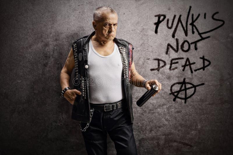 Mogen manlig punker som rymmer en väggsprej och lutar mot en rostig grå vägg med skriftliga den inte döda punkrocket och anarkite royaltyfria bilder