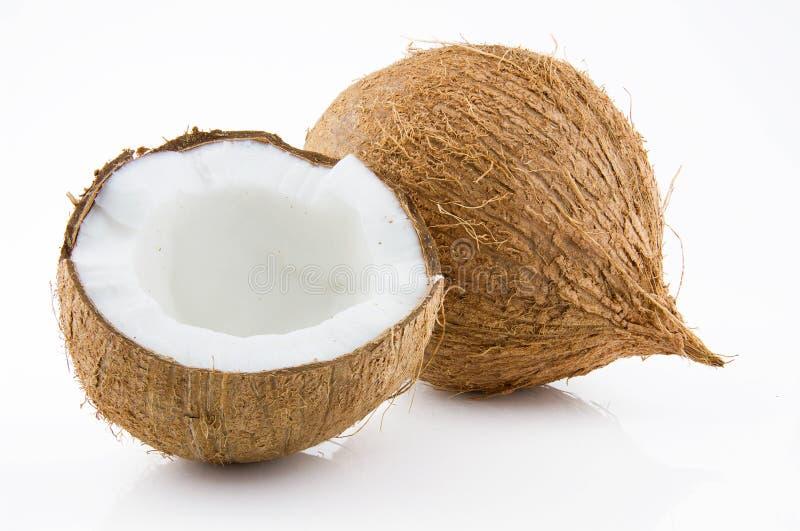 Mogen och aptitretande kokosnöt royaltyfri bild