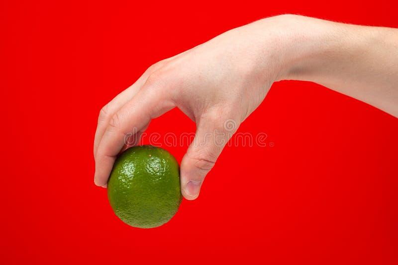 Mogen saftig limefrukt i handen som isoleras på röd bakgrund arkivfoto