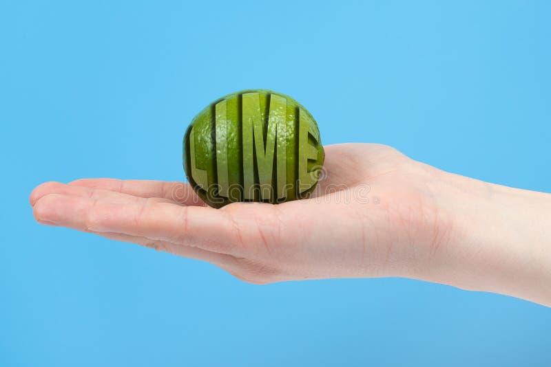 Mogen saftig limefrukt i handen som isoleras p? bl? bakgrund Sunt ?ta och banta begrepp royaltyfri bild