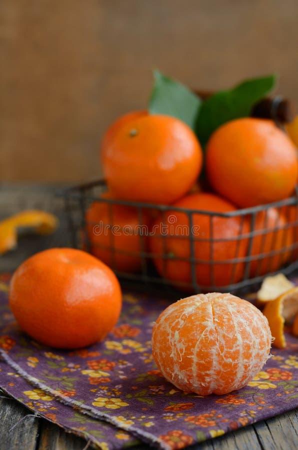 Mogen tangerinfrukt- och trådkorg mycket av mandarines royaltyfri foto