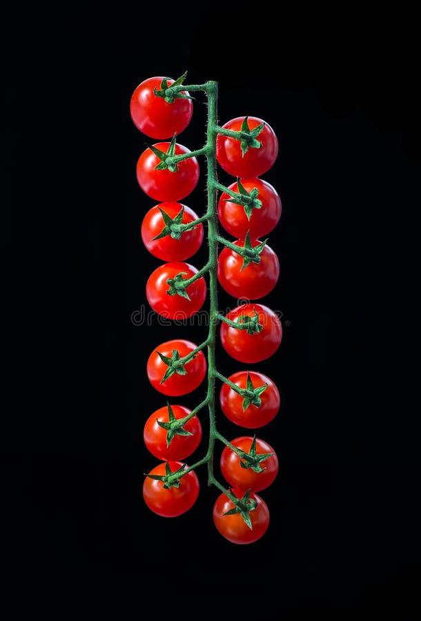 mogen tomat för Cherry arkivfoton