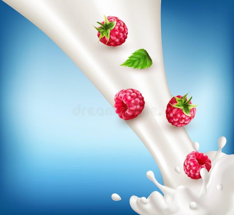 Mogen vektor, rött hallon som faller in i mjölka Mjölka färgstänkwi stock illustrationer