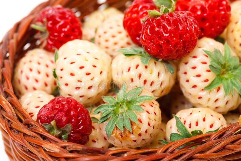 Mogen vit och röda jordgubbar i korg royaltyfria bilder