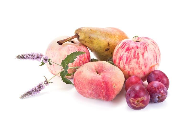 mogen white för frukt arkivfoto
