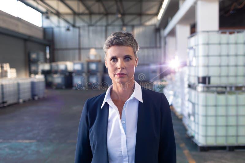 Moget kvinnligt chefanseende i lager arkivfoto
