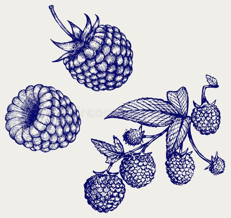 moget leafhallon stock illustrationer