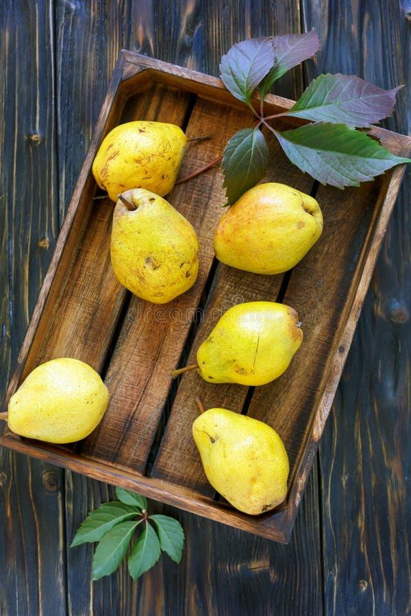 Moget päron och höstsidor i träask arkivbilder