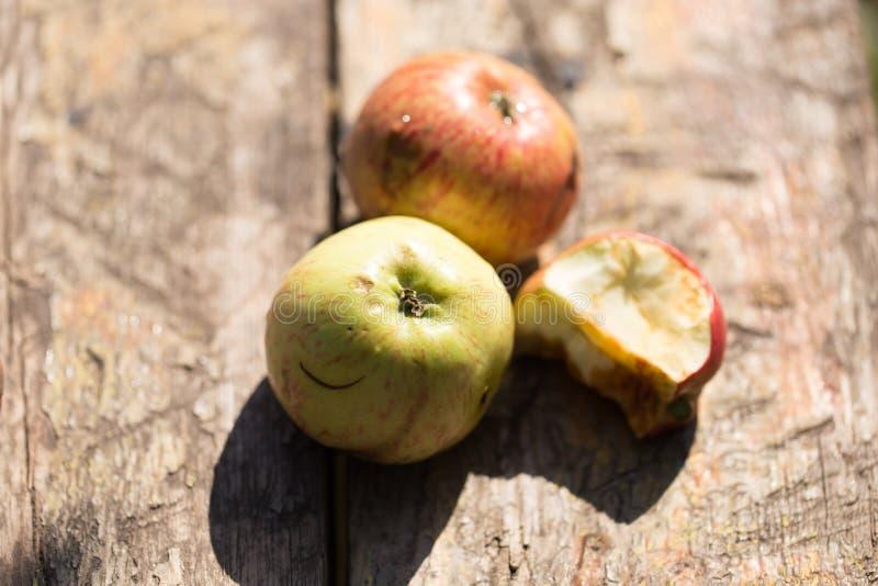 Mogna äpplen på en träbakgrund royaltyfria bilder