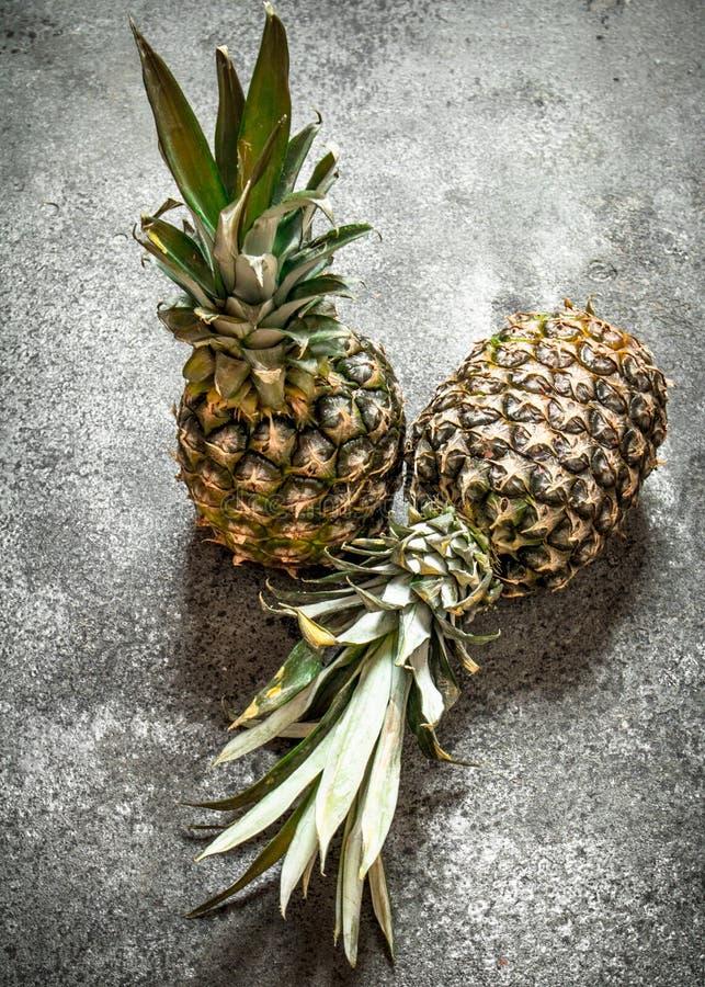 mogna ananas arkivbilder