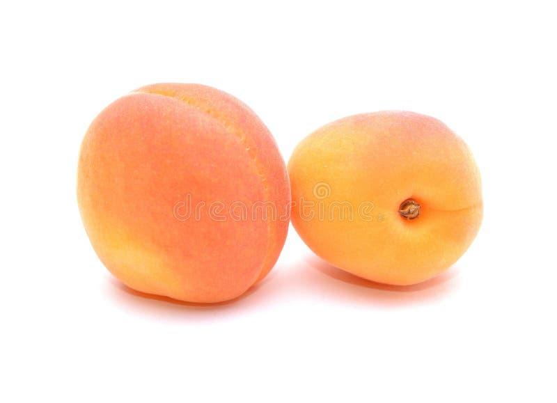 mogna aprikosar arkivbild