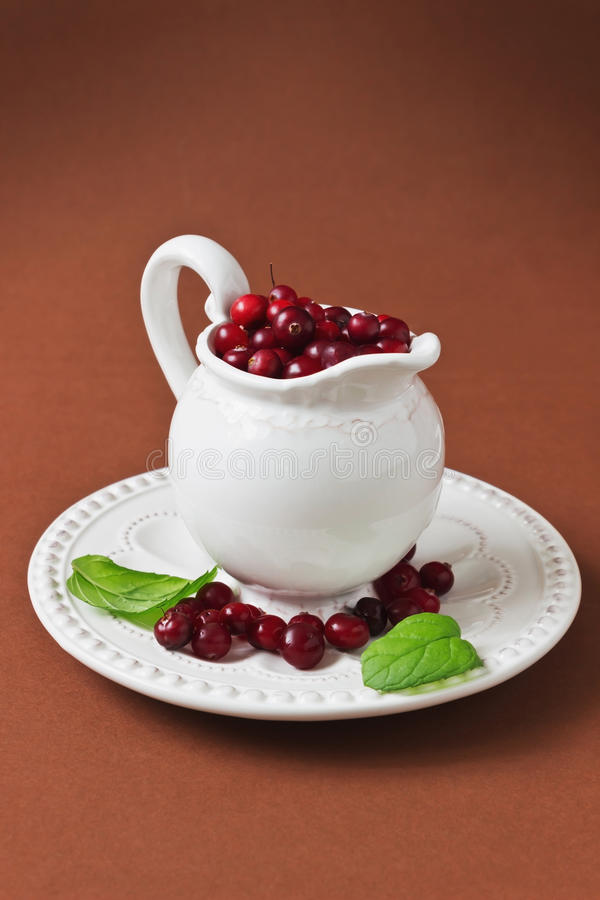 mogna cranberries royaltyfria bilder