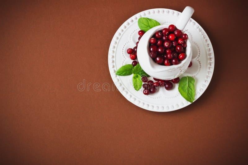 mogna cranberries royaltyfri bild