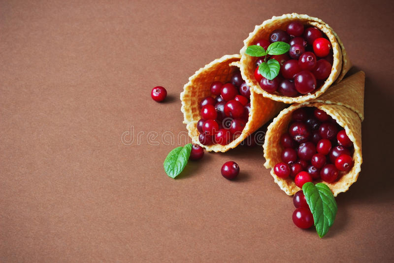 mogna cranberries arkivfoto