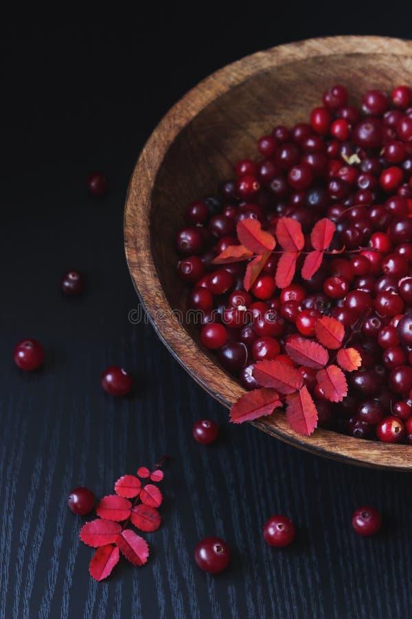 mogna cranberries arkivfoton