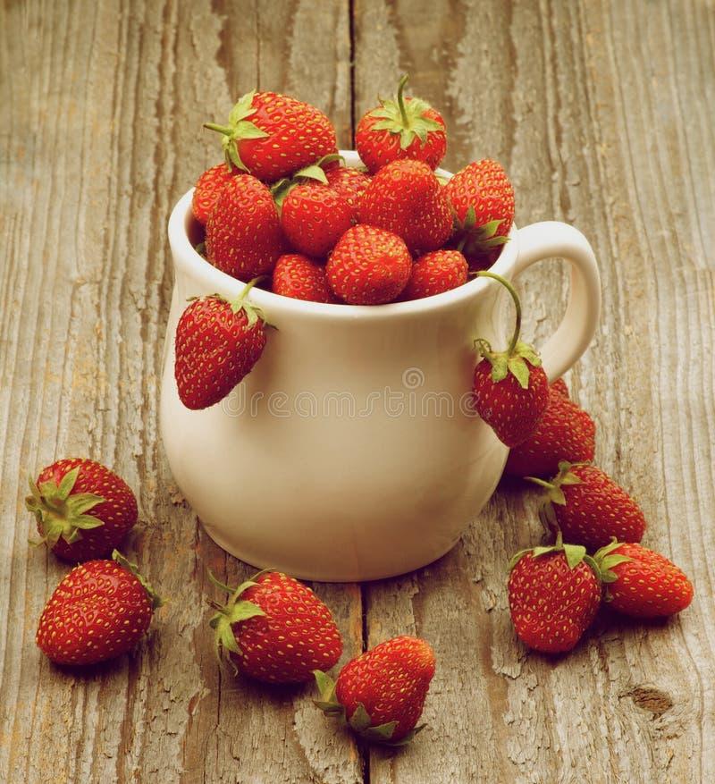 Mogna Forest Strawberries arkivfoton