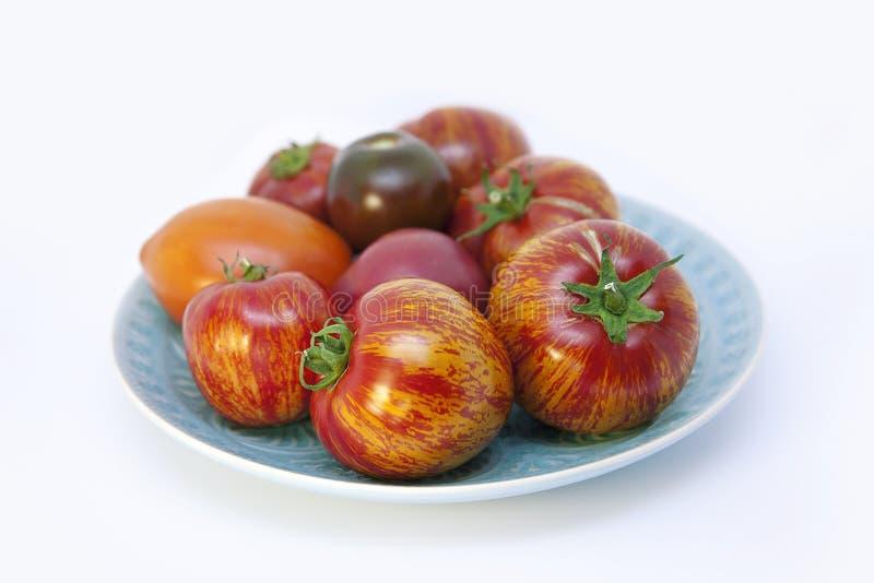 Mogna glansiga, för apelsin, rosa och svarta tomater med gröna svansar i en blå tappningporslinplatta royaltyfri foto