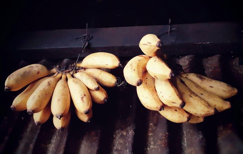 Mogna gula bananer som hänger inom, shoppar arkivbild