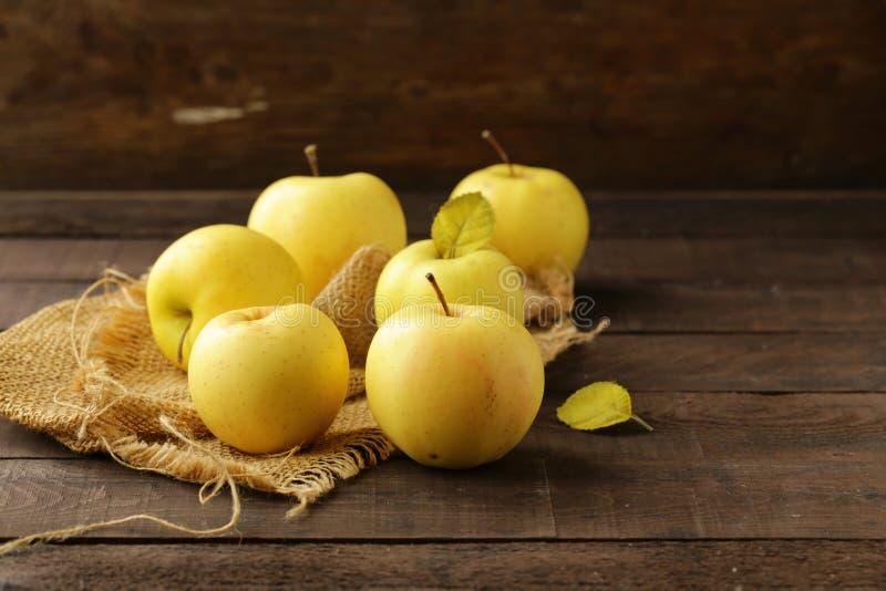 Mogna gula organiska äpplen royaltyfri foto