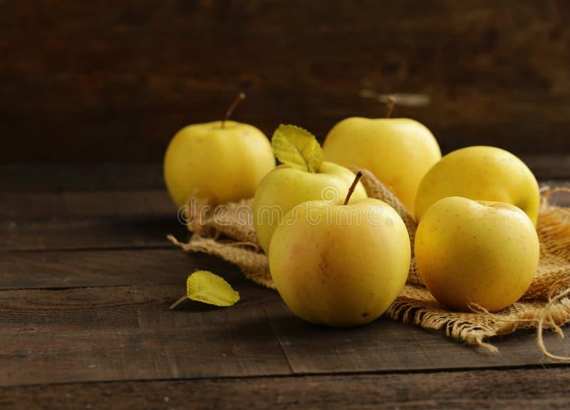 Mogna gula organiska äpplen royaltyfri fotografi